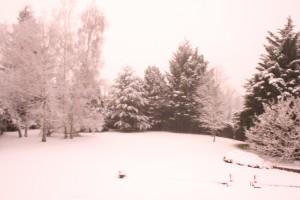 Un temps à ne pas mettre un motard sur la route. neige_004-300x200